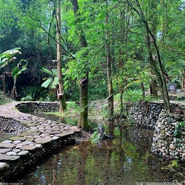 深圳不断探索生态文明考核与城市生态管理 推广GEP核算