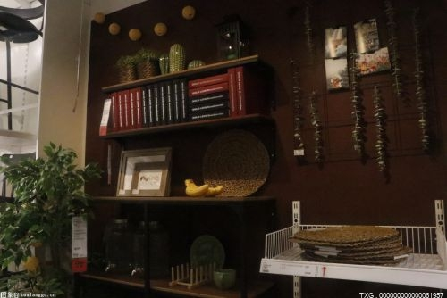 人家的一居室布置是這樣的 不同的功能區在生活中起到的作用是不同的