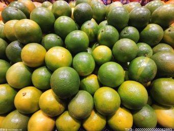 丹江口30万吨柑橘销往各地 产值近6亿元