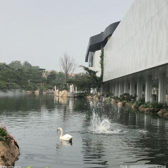 扫描芯片、抽血、注射疫苗......北京动物园150多只水禽进行集体体检