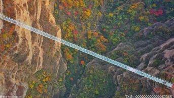 走出一條人與自然和諧發展的路子 設立長遠保護目標